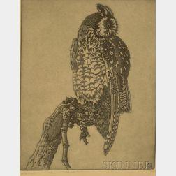 Benson Bond Moore (American, 1882-1974)      Portrait of an Owl, 1933.