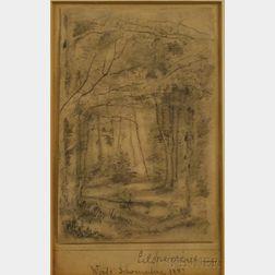 Louis Michel Eilshemius (American, 1864-1941)      Woods, Schwarzenberg