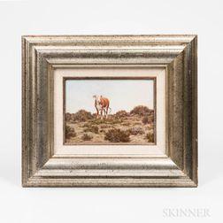 Vic (Victor Paul) Donahue (Arizona/New York/Nebraska, 1918-2008)    Cow in a Grassy Pasture