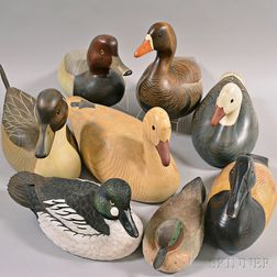 Eight Contemporary Carved and Painted Duck Decoys