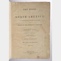 Baird, Spencer Fullerton (1823-1887) The Birds of North America  , Atlas Volume Only.