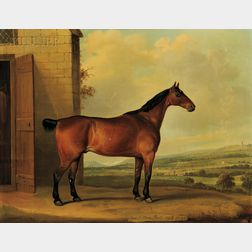 Thomas Weaver (British, 1774-1843)      Coach Horse, Bob, Aged 21 Years