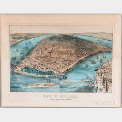 Stinson, George (fl. circa 1870) View of New York.