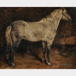 Rosa Bonheur (French, 1822-1899)      Dappled Gray Horse, Facing Right