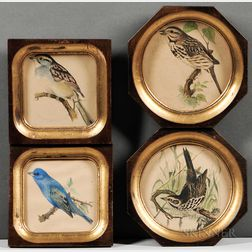 Robert Ridgway (American, 1850-1929)    Four Framed Bird Prints: Sea-side Finch ,  Indigo Bunting ,  White-Throated Sparrow