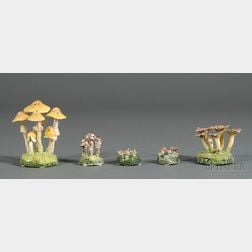 Five Maria Maravigna Mushrooms