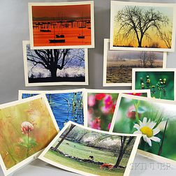 Daniel Farber (American, 1906-1988)      Ten Photographs:   Clover