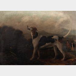 Manner of William Shaw (British, fl. 1760-1772)      Foxhound in a Landscape with a Hunt Beyond