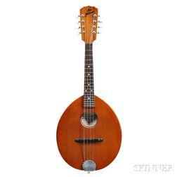 Flatiron 15H Mandolin, 1982