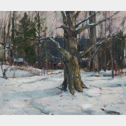Carl William Peters (American, 1897 or 1898-1980)      Woods in Snow