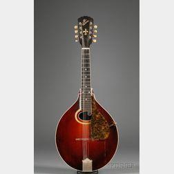 American Mandola, Gibson Mandolin-Guitar Company, Kalamazoo, c. 1915, Model H2