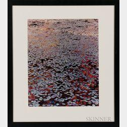 John Wawrzonek (American, b. 1941)      A Brilliant Stillness I, Wyman's Meadow, Walden Pond