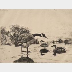 Frank Weston Benson (American, 1862-1951)      Goose and Teal
