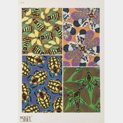 E.A. Seguy (French, 20th Century)  INSECTES/