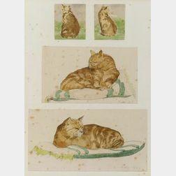 American School, 20th Century  Four Studies of an Orange Cat