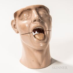 Rubber Anatomical Model of a Tongue and Nose