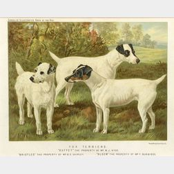 Six Framed Colored Lithographs of Dogs
