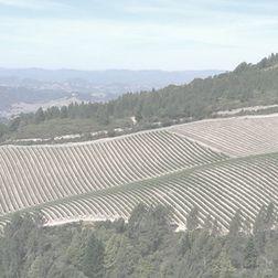 Altesino Brunello di Montalcino Riserva 1997