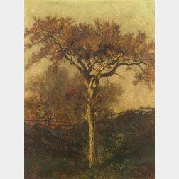 Frederick Dickinson Williams (American, 1829-1915)    Oak Tree, Smith Farm, Manchester