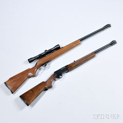 Two .22 Caliber Rifles