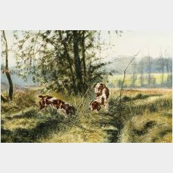 Anglo/American School, 20th Century  Spaniels Flushing Grouse.