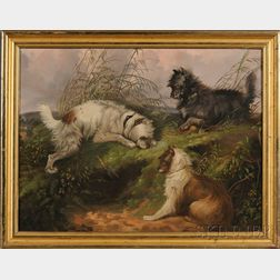 Manner of George Armfield (British, b. circa 1808-1893)      Terriers Ratting