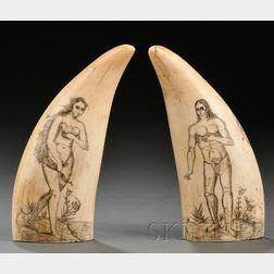 Pair of Engraved Whale's Teeth