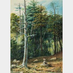 William Allen Wall (American, 1801-1885)      Woodland Respite