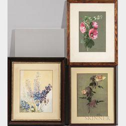 American School, 20th Century      Three Framed Works on Paper: Roses ,  Delphinium