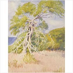 William McGregor Paxton (American, 1869-1941)  Tree Study
