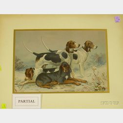 Two Framed Chromolithographs of Hunting Dogs After Alexander Pope, Jr.