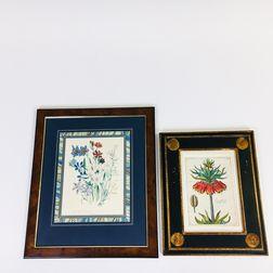 Six Framed Hand-colored Botanical Prints.     Estimate $400-600