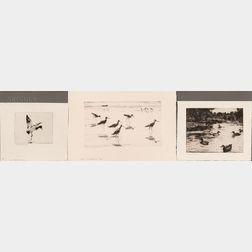 Frank Weston Benson (American, 1862-1951)    Three Waterfowl Prints: Redhead Alighting