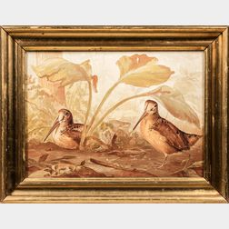 Framed Lithograph of Two Woodcocks