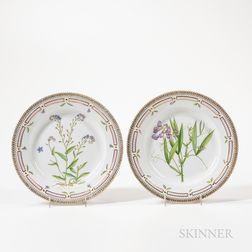 Two Royal Copenhagen Flora Danica Plates