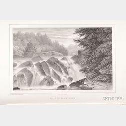 Agassiz, Louis (1807-1873)