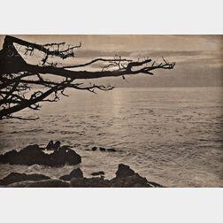 William E. Dassonville (American, 1879-1957)      View from Monteray.