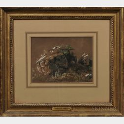 Attributed to Hermann Herzog (American/German, 1832-1932)    Landscape Study with Rocks