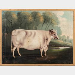 American School, 19th Century      Portrait of a White Cow