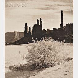 Joan Myers (American, b. 1944)      Monument Valley Bush
