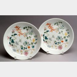 Pair of Porcelain Plates