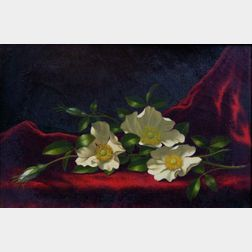 Martin Johnson Heade (American, 1819-1904)    Still Life with Cherokee Roses