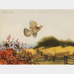 Lot of Three Wild Bird Images:      David Hagerbaumer (American, b. 1921), Snipe