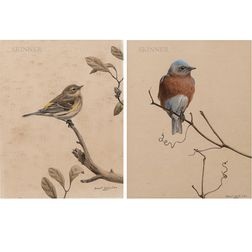Robert Verity Clem (American, 1933-2010)      Two Depictions of Songbirds: Eastern Bluebird