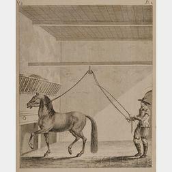 (Horsemanship), Berenger, Richard (d. 1782)