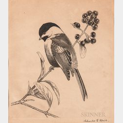 Three Ornithological Etchings:      Richard Evett Bishop (American, 1887-1975) Over the Sun