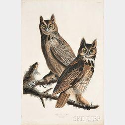 Audubon, John James (1785-1851) Great Horned Owl,   Plate 61.