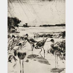 Frank Weston Benson (American, 1862-1951)      Yellowlegs in Sunlight