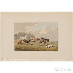 Alken, Henry (1785-1851) Four Plates of Dog Breeds from his Sporting Scrap Book.
