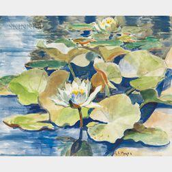 George Loftus Noyes (American, 1864-1954)      Waterlilies